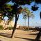 Palma de Mallorca Par de la Mar