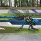 Dragonfly, Spray can on concrete, Mechelen, Belgium