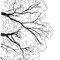 J.YOSHIDA CLINIC様のHPイラストを描かせていただきました。(ペン画)