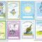 'My Happy Flower' Book Labels - Printable PDF - $1.50