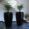 Pflanzkübel aus Kunststoff RWD