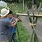 友達が節を取った竹を組む!