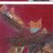 Kupfer-Serie –Gouache, Eisen & Blattkupfer, je 30 x 30 cm