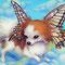 レディパピヨン lady papillon / F4(333×242mm)