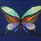 蝶   F0(180x140mm)キャンバス 刺繍、アクリル