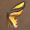 片羽根  F0(140×180)キャンバス 刺繍、アクリル、墨