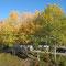 Herbst in Sollia