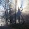 Strahleneffekte an der Nebelobergrenze bei Oberhueb.