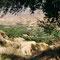 Laujar de Andarax, Spanien