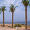 Can Picafort, Mallorca, Spanien