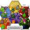 4 Zahlendreh und Loh-Shu-Gitter-Eulen Flexagon
