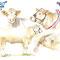 Diplôme concours vache race Charolaise - Eurogénétique 2013 - Encre couleur et crayon noir sur papier - 50 x 40 cm<br><br>Illustration . dessin . animalier . animal