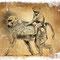 Mère et fille (Singes Tanzanie) - Carte vœux cabinet Vétérinaire C. Valentin Nancy-Jarville-La Malgrange - Crayon noir sur papier matière - 18 x 13 cm - 2016