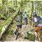 Sortie VTT en forêt vosgienne - Illustration Gazette de la Schlucht N°9 - Encre couleur et trait noir sur papier - 2016 <br><br>Illustration . dessin . sport . sous-bois