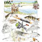 La Pêche - Image d'Epinal - 50 x 65 cm - 2004<br><br>Artiste peintre . illustrateur . imagier . illustration à thème . planche naturaliste . poisson . pêcheur . truite . carpe . tanche . brochet