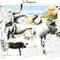 La Vosgienne I - Image d'Epinal - 65 x 50 cm - 2003<br><br>Artiste peintre . illustrateur . imagier . illustration à thème . vache vosgienne . hautes vosges . race vosgienne . syndicat race vosgienne