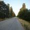 Donauradweg kurz vor Zagrazhden, Bulgarien.