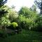 Garten oben