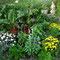 Gemüse-/Blumenbeet