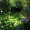 Garten unten