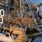 47    ファルモス    FALMOUTH  年代:   18世紀   船籍: イギリス  縮尺:   1/75    ユーロモデル   製作者:  瓜生法男  製作期間:  2年