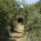 tunnel,   2005, Pont du Gard, (30)