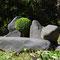 buis et schiste, 1995, jardin privé, Bompas (66)