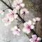 Kirschblüte, Acryl auf Leinwand, 2016, (verkauft)