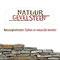 Visitekaartje ontwerp Natuurgevelsteen: Dalfsen Design - realisatie:Doorn media en produktie