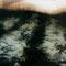 茵のように散りしいた午後 27×35(cm) 油絵具、顔料、パネルに寒冷紗、石膏地 Sold