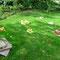 Génie des jardins 2010 – Respirer