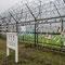 DMZ : Frontière entre le Nord et le Sud de la Corée