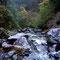 宮崎の一ノ瀬川の西米良村上流の支流
