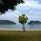 結の浜からの殿の山(左側の岬)