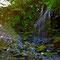 源流域の行き止まりの滝