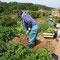 ジャガイモを掘ってもらったオーナーのK山さん