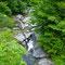 宮崎の一ノ瀬川上流の大藪川/これより上流域は九大の演習林(保護区)