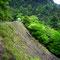 宮崎の山岳渓流を目指す