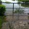 04.06.2013 - das Wasser steigt noch immer