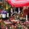 Zagreb European Best Destinations - Copyright M. Vrdoljak