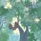 シマフクロウの森3