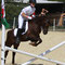 Classy Welsh B breeding: 18 yr old, Kondor with wins on a string in dressage (!), going back to the illustrious Constantin, e.g. sire of European Dressage Ponychampion Konrad. Rider: 13 yr old Clara B..