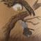 『隠し剣孤影抄』GALLERY HOUSE MAYA 装画を描くコンペティションVol.16 入選作品