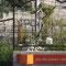 Parvis Cartonnerie - Jardins partagés