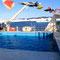 Hanseatic Pool