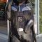 der Darth Vader Bär
