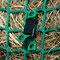 Befestigung unten: Steckverschluss am Netz mit Druckknopf schließen