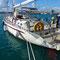 Bild: Segelten durch´s Mittelmeer - Foto 34