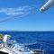 Bild: Segelten durch´s Mittelmeer - Foto 28