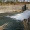 2010年4月19日、この小堰堤手前側でアマゴを釣る